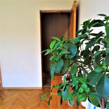 3 комнатная квартира, Химки, Пожарского 16 - Фото 3