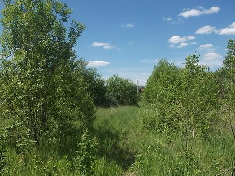 Продается земельный участок 8 соток в СНТ рядом с городом Белоусово - Фото 4
