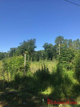 Предлагается земельный участок рядом с санаторием Уссури. - Фото 2