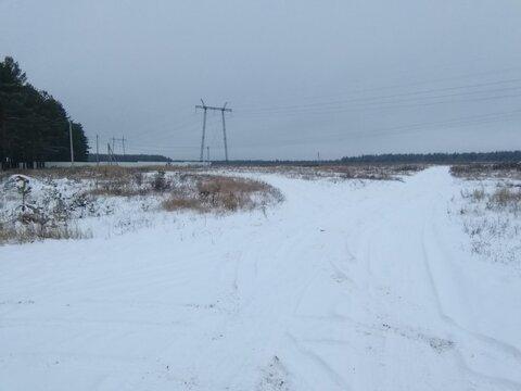Земельный участок 6 га в селе Филипповское Владимирской области - Фото 5