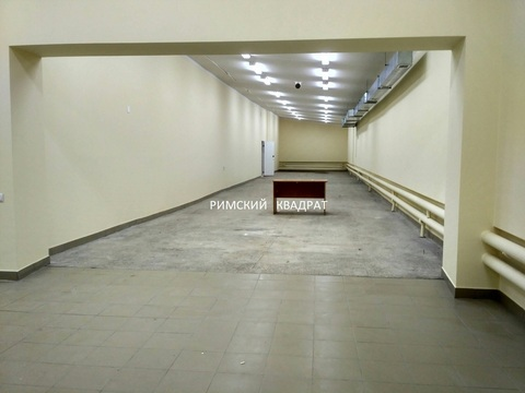 Сдается торговое помещение, 1 линия, ул. Маяковского, 280 кв.м. - Фото 5