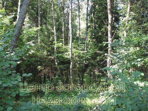 Участок, Дмитровское ш, 50 км от МКАД, Большое Ивановское д. . - Фото 4