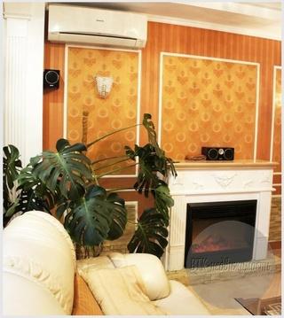 3-х комнатная Vip-квартира в Омске - Фото 3