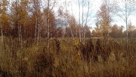 Большое Петровское 10 соток, знп для ИЖС, 53 км от МКАД. - Фото 2