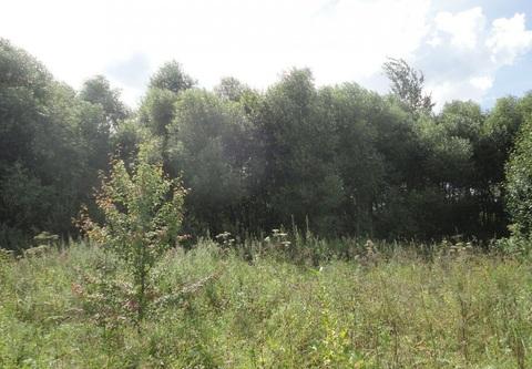 Участок, Киевское ш, 12 км от МКАД, Зименки д. (Ленинский р-н). . - Фото 2