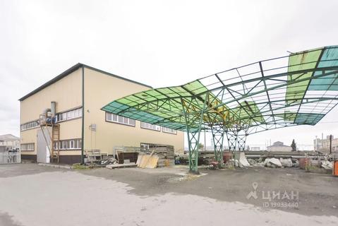 Производственное помещение в Тюменская область, Тюмень Московский . - Фото 2