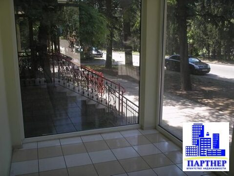 Свое помещение 40 м2 в Ялте на Московской, 43 - Фото 3