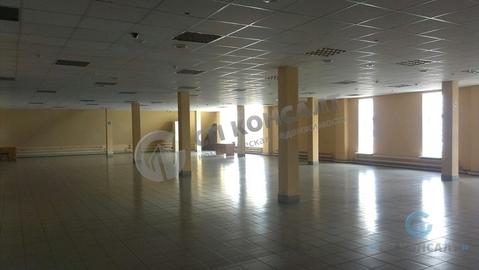 Аренда торгового помещения 1900 кв.м. - Фото 4