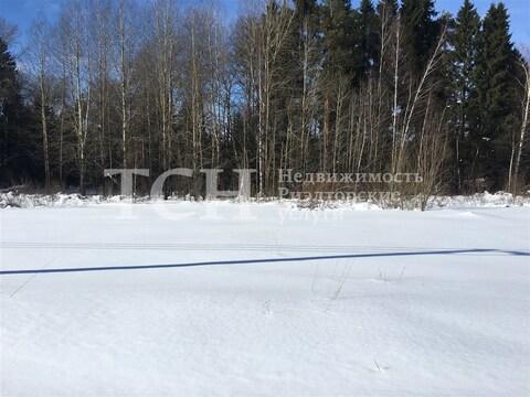 Участок, Щелковский, п Огудневского лесничества - Фото 4