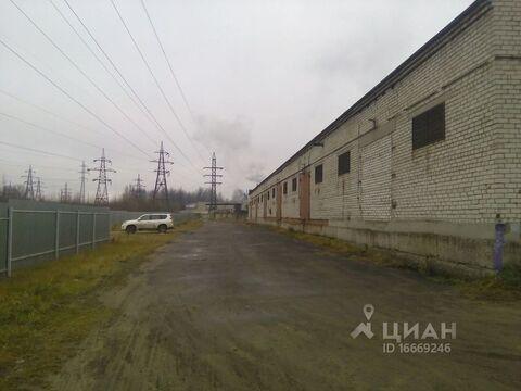 Склад в Ярославская область, Ярославль ул. Гагарина, 56 (144.0 м) - Фото 2