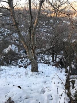 Продажа земельного участка, Кисловодск, 2-й Зеленогорский пер. - Фото 4