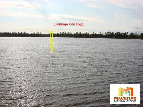 Шинкарский пруд - Фото 4