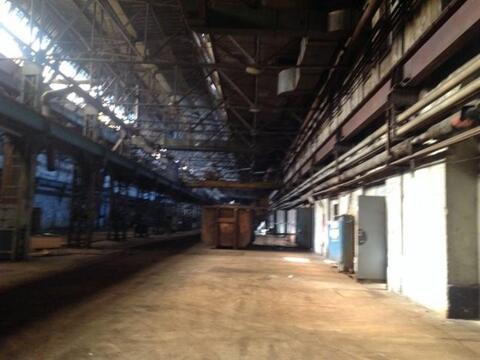 Сдам складское помещение 906 кв.м, м. Площадь Ленина - Фото 5