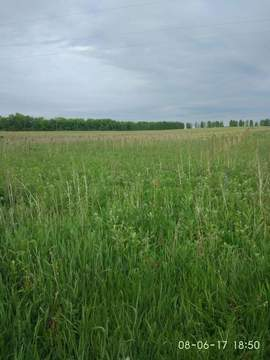 Продажа: земельный участок 1100 соток - Фото 3