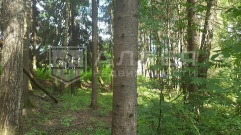 Лесной участок 15 сот. - Фото 2