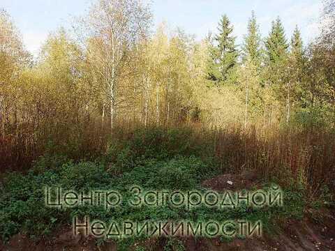 Участок, Киевское ш, 26 км от МКАД, Елизарово д. (Наро-Фоминский р-н), . - Фото 5