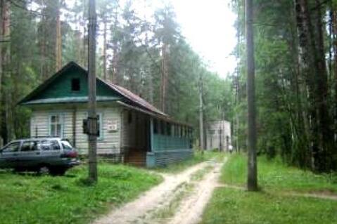 Продам: готовый бизнес, село Вершилово