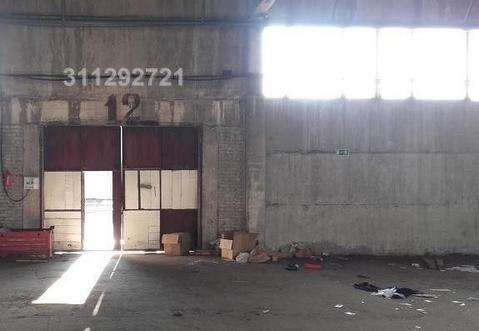 Холодный склад -1000 кв.м. -. м/м. Потолки 11 м. Полы бетон. Пан - Фото 4
