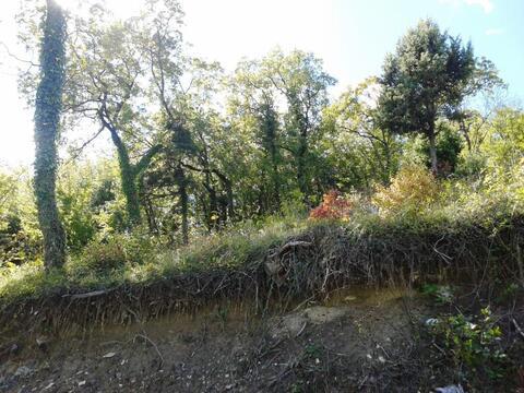 Купить дачный земельный участок 7сот. в Новороссийске - Фото 4
