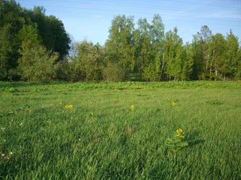 Продается участок в экологически чистом месте Рузского района! - Фото 3