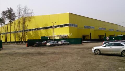 Продажа готового бизнеса, Зеленый, Ногинский район - Фото 1
