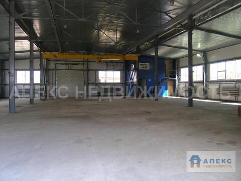 Аренда помещения пл. 732 м2 под склад, , Руза Можайское шоссе в . - Фото 3