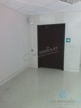 Сдаю торгово-офисное помещение 66,2 кв.м. Площадь Ленина - Фото 5