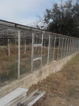 Сдаются длительно теплицы, пл. 330кв.м, стекло, район Дергачи - Фото 5