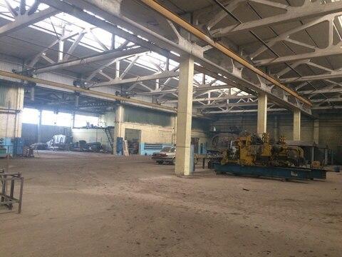 Сдаю в аренду производственно-складские помещения по ул. Пушанина 46 - Фото 3