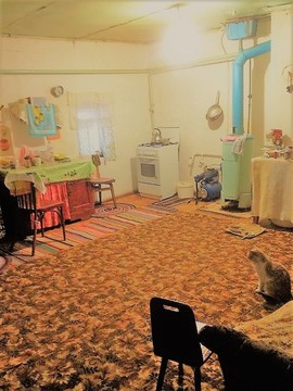 Продам дом у водоема в Живописном с. Сушки - Фото 1