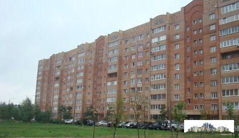 Просторная однокомнатная квартира в Домодедово, мкр.Дружба. - Фото 1