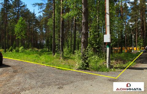 Респектабельный участок 9 соток в п.Кузьмоловский - Фото 5