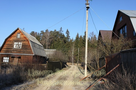 Участок, Можайское ш, 40 км от МКАД, Ястребки д. (Одинцовский р-н), . - Фото 3