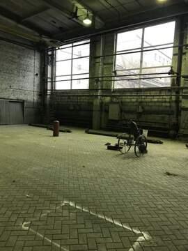 Аренда производства 1700 кв.м, Белгород - Фото 3