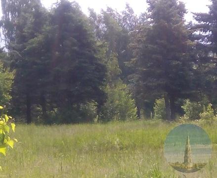 582. Ново-Окатово. Участки под строительство дома отдыха/базы . - Фото 3