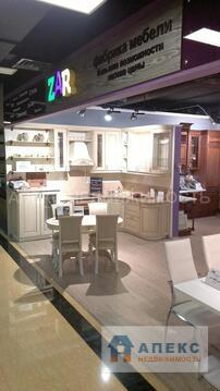 Продажа магазина пл. 65 м2 м. Алтуфьево в торговом центре в Бибирево - Фото 2