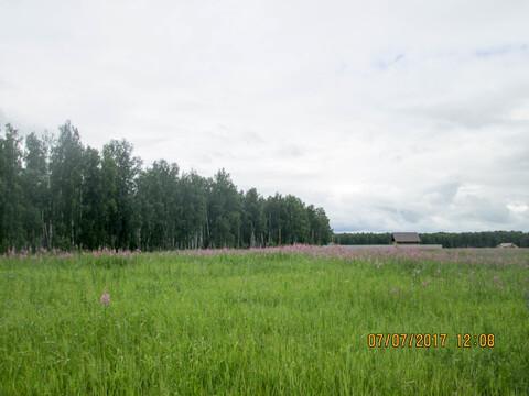 Земельный участок в Долгодеревеском Сосновского района - Фото 5