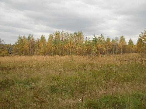 Участок 15 соток в д.Неверово, Клепиковского района. - Фото 5