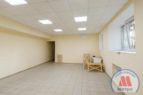 Коммерческая недвижимость, пр-кт. Толбухина, д.62 - Фото 4