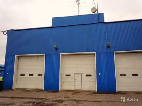 Сдам производственное помещение 970 кв.м, м. Купчино - Фото 3