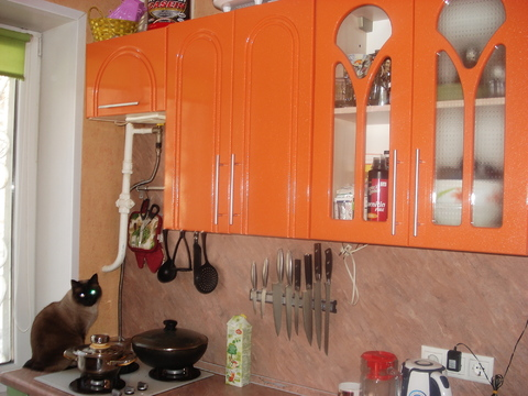 Продается 1-я квартира в 4 мин. пешком от м. Царицыно - Фото 1
