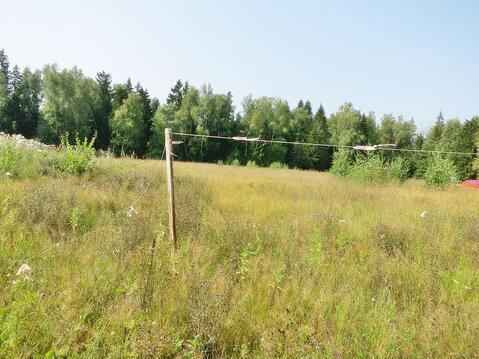 50,7 сот в лесу за 8 млн руб (торг) - Фото 2