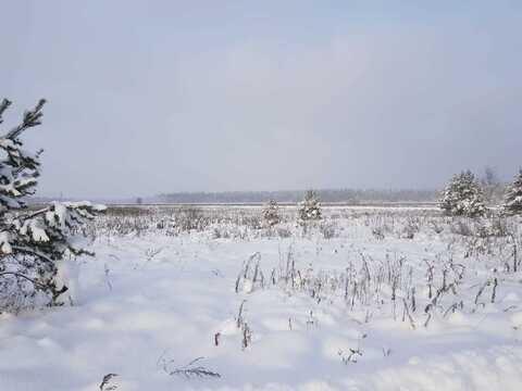 Участок ИЖС У соснового леса - Фото 3