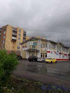 Продажа псн, Малое Карлино, Ломоносовский район - Фото 3