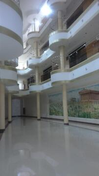 2 комн. квартира в элитном доме на ул.Революционной - Фото 4
