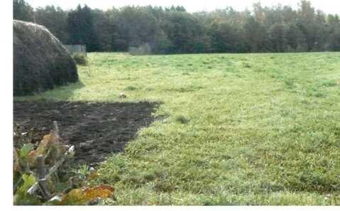Продаю земельный участок в д.Шербаши Моргаушского р-на - Фото 5