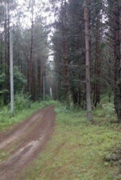 Продажа участка, Гавино, Череповецкий район, - Фото 2