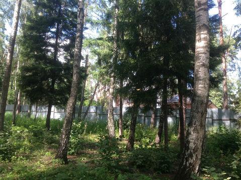 Д. Солослово кп ДПК «Гранит» красивый рельефный лесной участок 1.13 Га - Фото 5