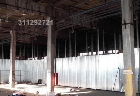 Холодный склад -1000 кв.м. -. м/м. Потолки 11 м. Полы бетон. Пан - Фото 3