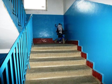 1к квартира в п. Малино, Ступинского р-на - Фото 3